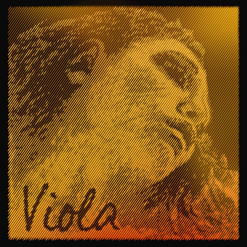 Evah Pirazzi oro Viola, Cuerda-Reo, medio