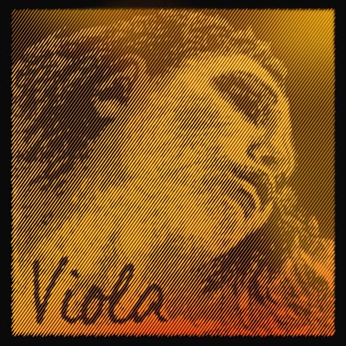 243754Evah Pirazzi Oro viola, Cuerda-Reo, Acero/Wolfram, medio